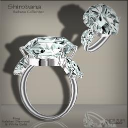 ShirobanaWGRing